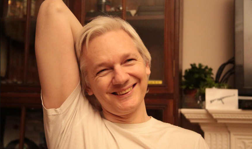 WHY I SUPPORT JULIAN ASSANGE BY MIKE LYONS post image